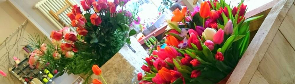 Blumen und mehr…